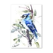 Autorský plagát Blue Jay od Surena Nersisyana, 42 x 30 cm