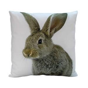Vankúš Rabbit Bob, 45x45 cm