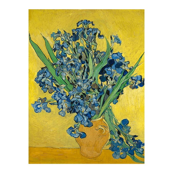 Obraz Vincenta van Gogha - Irises, 60x80 cm