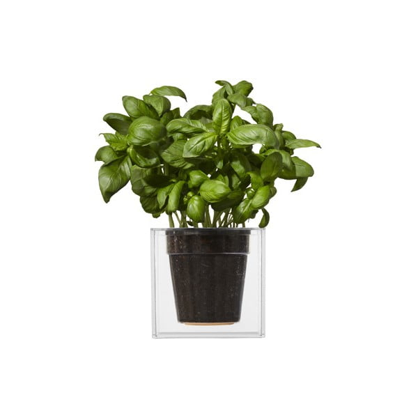 Samozavlažovací kvetináč Cube, veľký