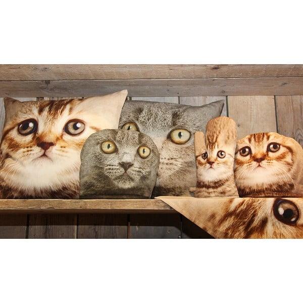 Vankúš Cat Tabby, 50x50 cm