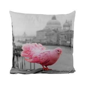 Vankúšik Black Shake Pink Dove, 50x50 cm