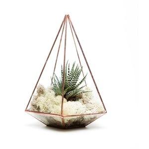 Terárium s rastlinami Jewel Terrarium, svetlý rám