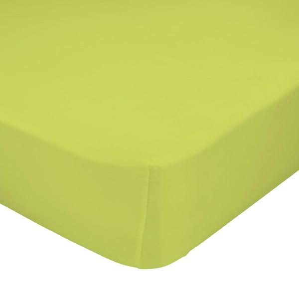 Zelená elastická plachta Happynois, 90x200cm
