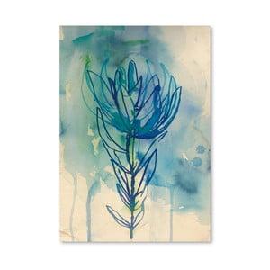 Plagát Blue Wash Protea, 30x42 cm