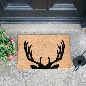Rohožka Artsy Doormats Stag Antlers, 40 × 60 cm