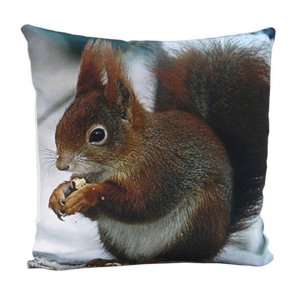 Vankúš Squirrel Sam, 45x45 cm