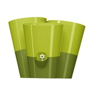 Kvetináč Fresh Herbs Trio Green