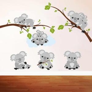 Samolepka Koala, 70x50 cm