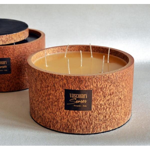 Palmová sviečka Palm Legno s vôňou medu, 240 hodín horenia