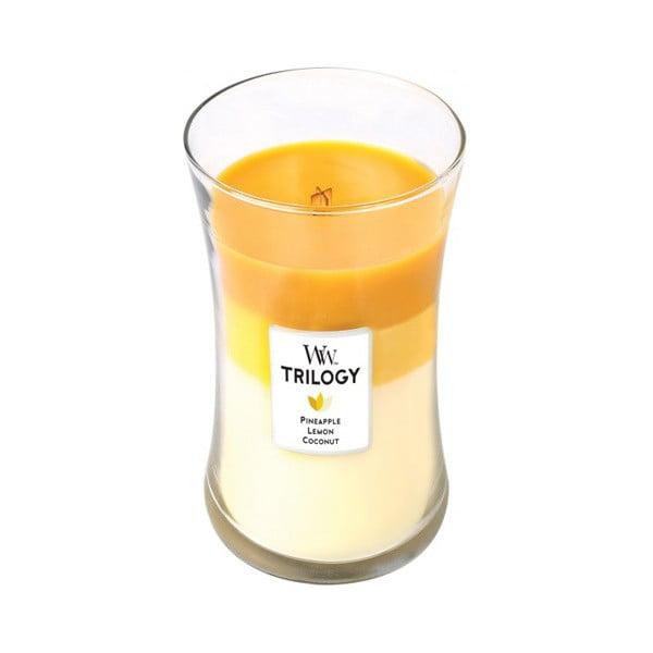Sviečka s vôňou ananásu, citrusov a kokosu Woodwick Trilogy Plody leta, doba horenia 130 hodín