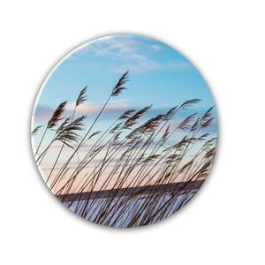Obraz Styler Wind