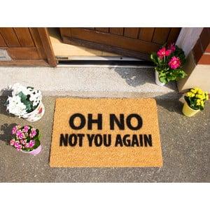 Rohožka Artsy Doormats Not You Again, 40x60cm