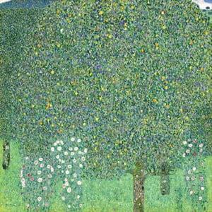 Reprodukcia obrazu Gustav Klimt - Rose Bushes under the Trees, 70x70cm