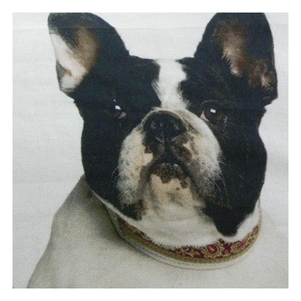 Vankúš French Bulldogs 50x50 cm