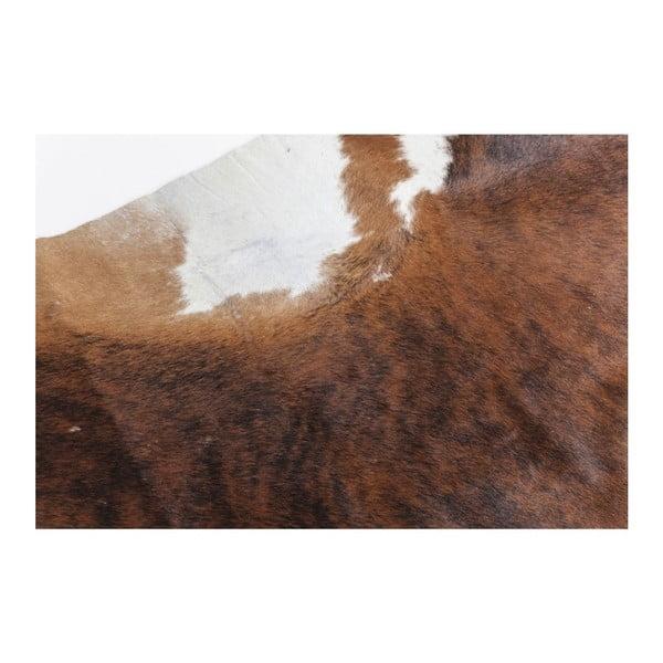 Hnedý koberec z hovädzej kože Kare Design Hide