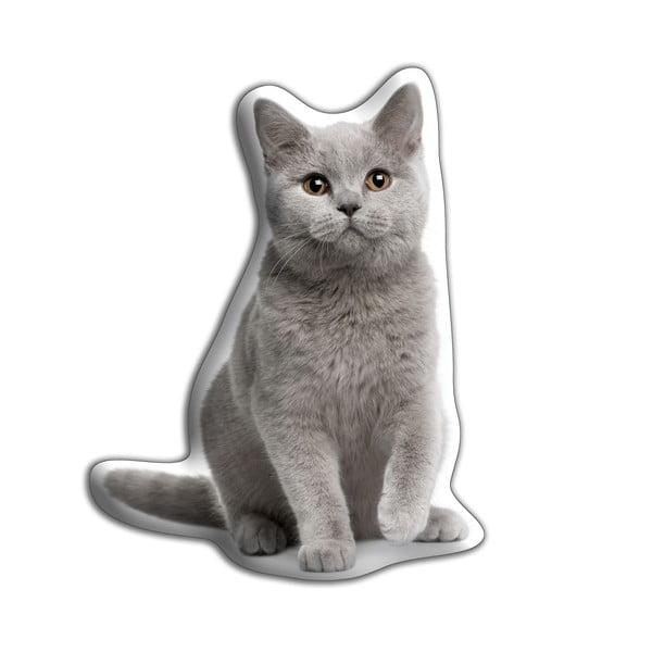 Vankúšik Adorable Cushions Britská krátkosrstá mačka