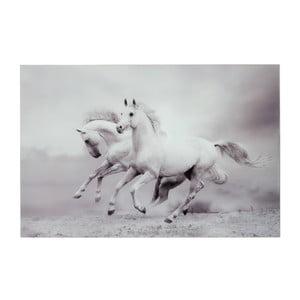 Sklenený obraz Two Horses, 80x120 cm