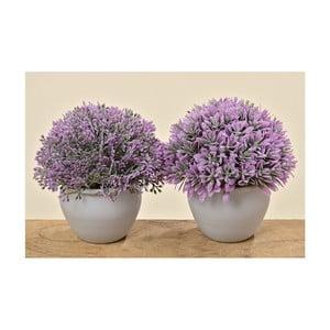 Sada 2 umelých levandulí v kvetináči Lavender
