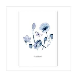 Plagát Leo La Douce Poppies &Butterflies II, 21x29,7cm