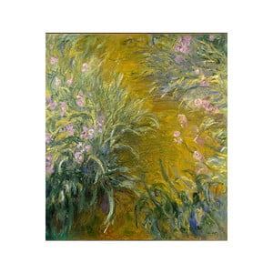 Obraz Claude Monet - The Path through the Irises, 50x45 cm