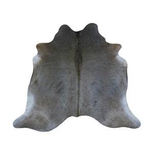 Sivý koberec z hovädzej kože, 196 x 194 cm