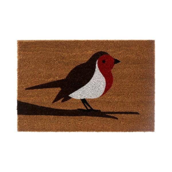 Rohožka Robin, 40x60 cm