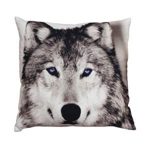 Vankúš ZOO Wolf, 45x45 cm