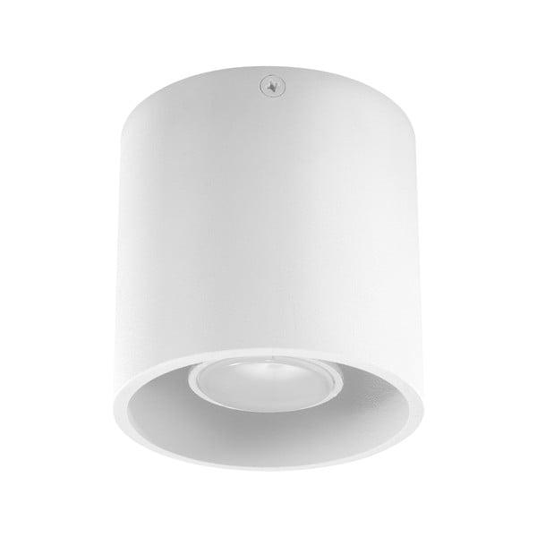 Závesné svetlo Nice Lamps Z81