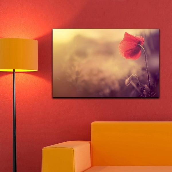 Obraz Makový kvet, 45x70 cm