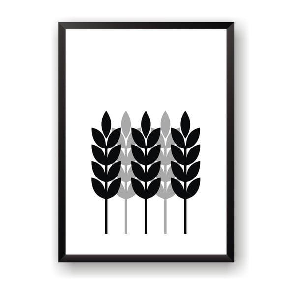 Plagát Nord & Co Corn, 50 x 70 cm
