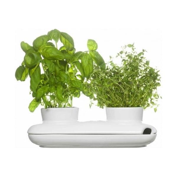 Kvetináč na bylinky Sagaform Duo Herb