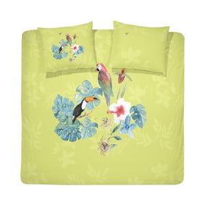 Bavlnené obliečky na dvojlôžko Cinderella Amazone Yellow, 200 x 240 cm