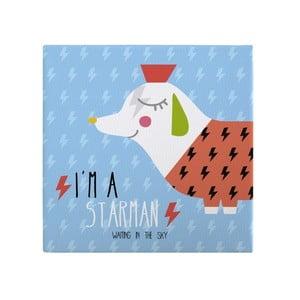 Nástenný obraz Pooch Starman, 27 x 27 cm