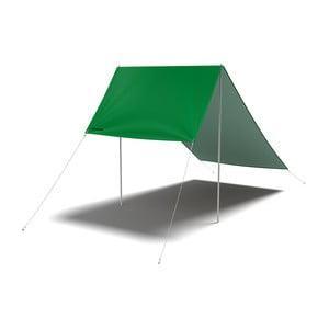 Celta Mean Green
