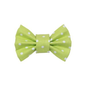 Svetlo zelený charitatívny psí motýlik s bodkami Funky Dog Bow Ties, veľ. S