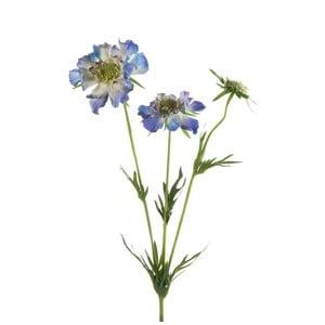 Umelý kvet Hlaváč, modrý