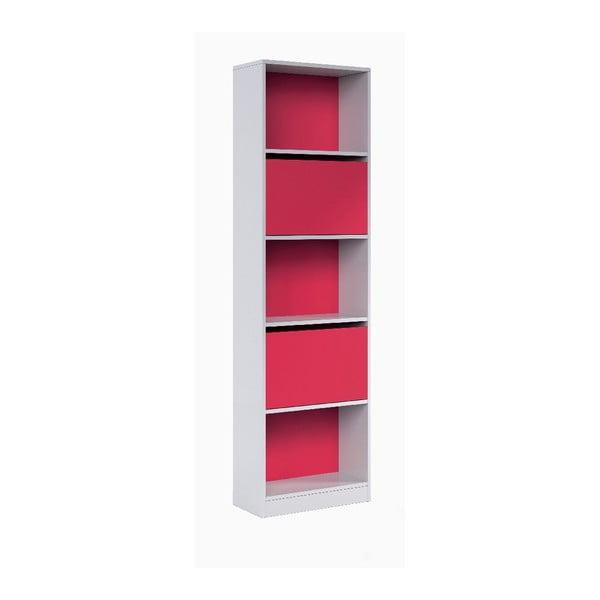 Ružovo-biela knižnica 13Casa Hesse