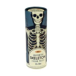 Puzzle vtube Rex London Anatomical Skeleton