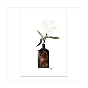 Plagát Leo La Douce Pale Blossom, 21x29,7cm