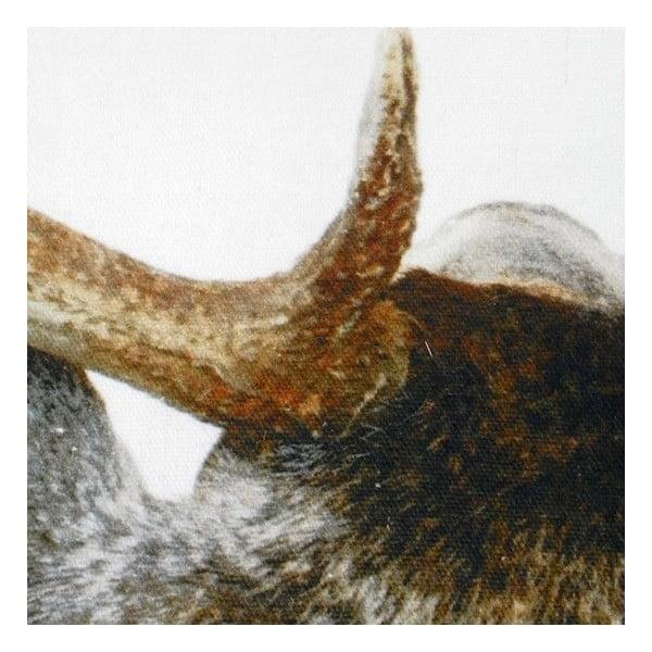 Vankúš Deer Back 50x50 cm