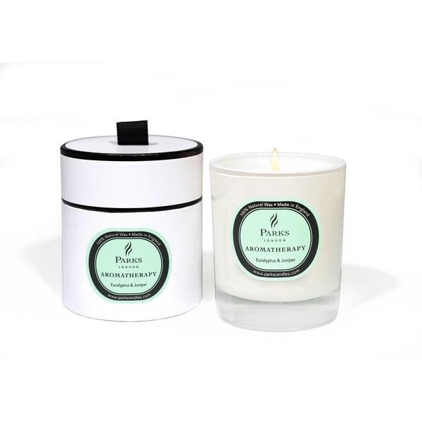 Sviečka s vôňou eukalyptu a borievky Parks Candles London, 50hodín horenia
