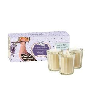 Sada 3 vonných sviečok French Lavender od Lisbeth Dahl