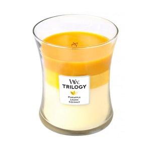 Sviečka s vôňou ananásu, citrusov a kokosu Woodwick Trilogy Plody leta, doba horenia 60 hodín