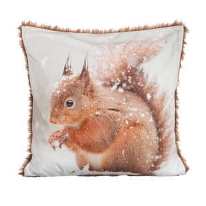 Vankúš Squirrel Velvet, 45x45 cm