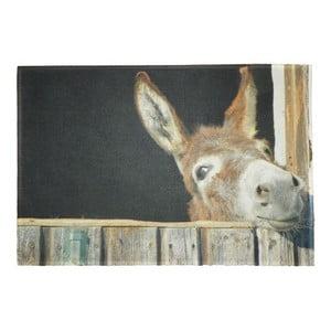 Predložka Donkey 75x50 cm