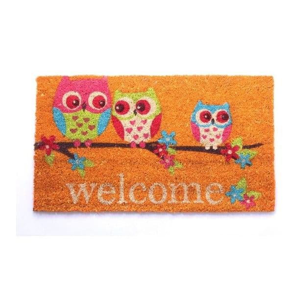 Rohožka Welcome Owls, 40x70 cm