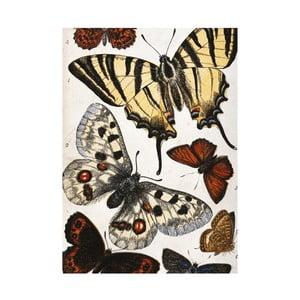 Utierka na riad Jay Biologica Butterflies