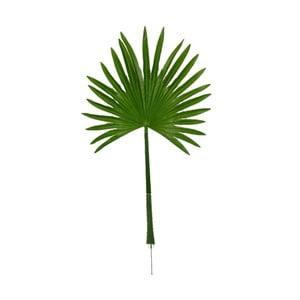 Dekoratívny list Boltze Palm