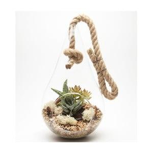 Terárium s rastlinami Tear Drop